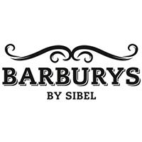 Produit de coiffure pour barbe homme barburys